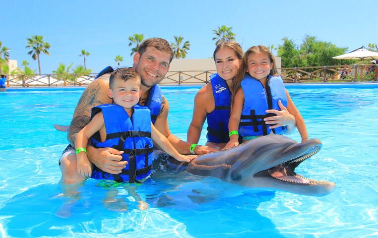 Swimming with Dolphins in Los Cabos