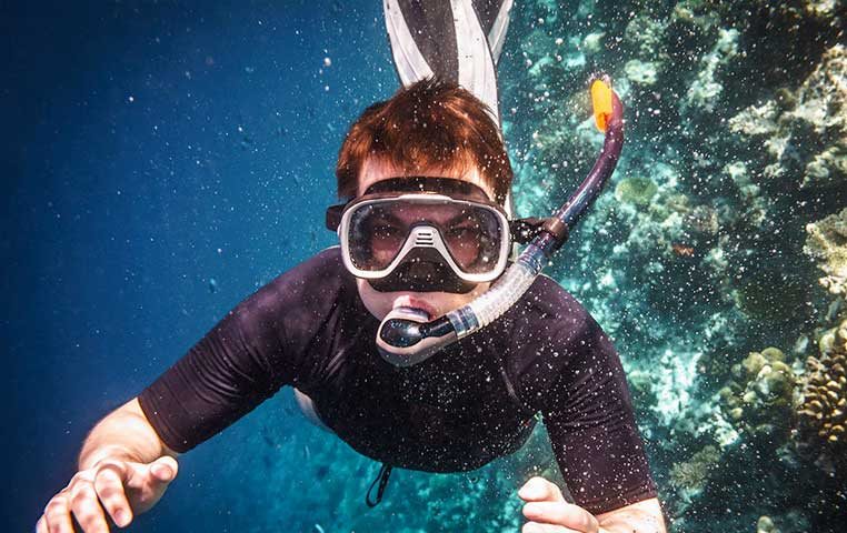 Man immersed in Water Snorkeling with a Sea Lion close up in Cabo