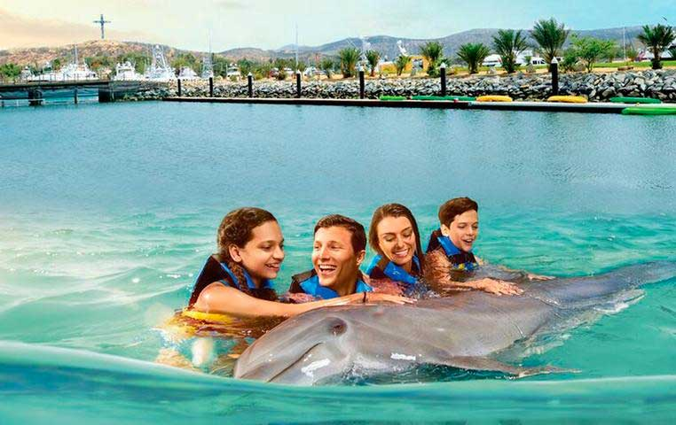 Family Petting a Dolphin in the Pool of the Cabo Dolphin Center