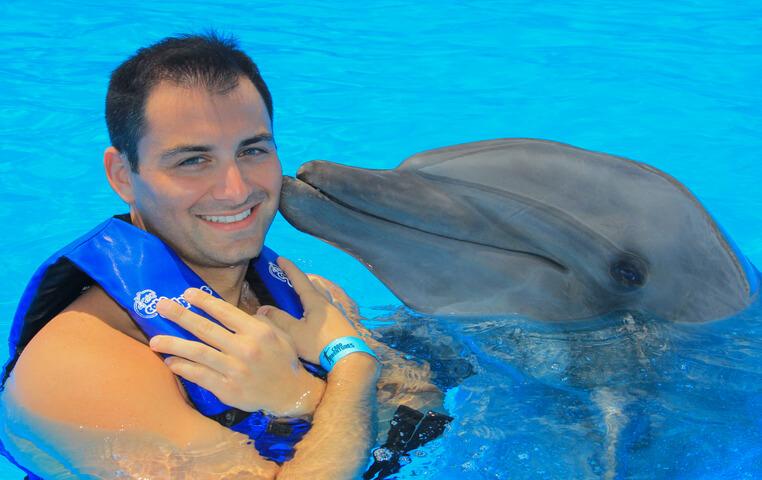 Cabo Dolphin Swim
