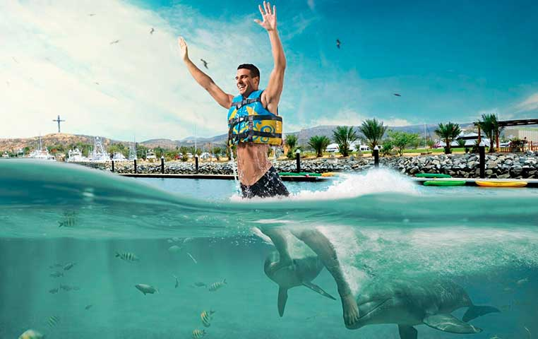 Man being pushed out the water by his feet by 2 Dolphins in Cabo