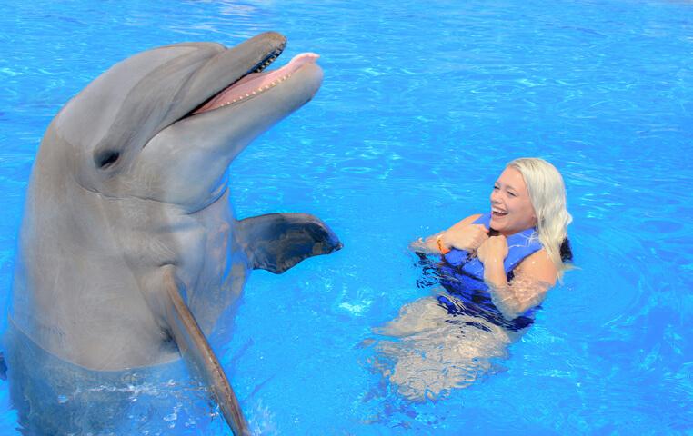Cabo San Lucas Dolphin Center
