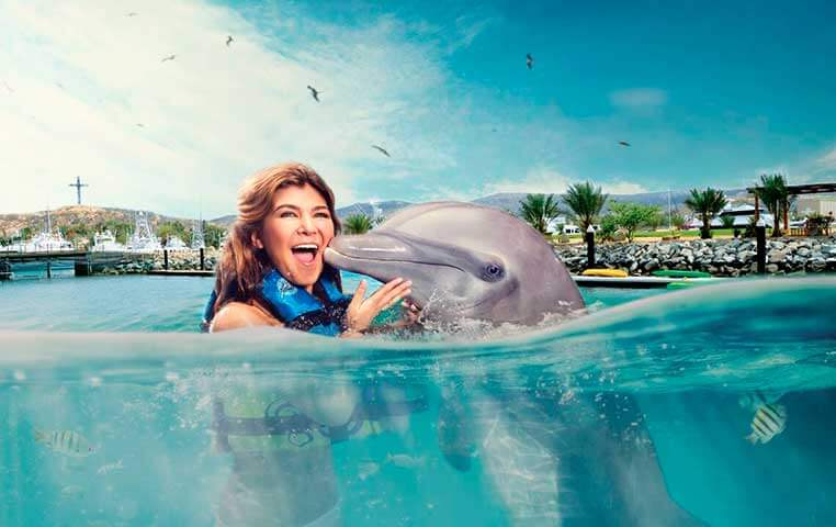 Women gets a nice Kiss on the Cheek by a Bottlenose Dolphin in Cabo