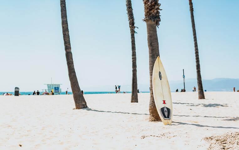 Cabo San Lucas Surfing Tour