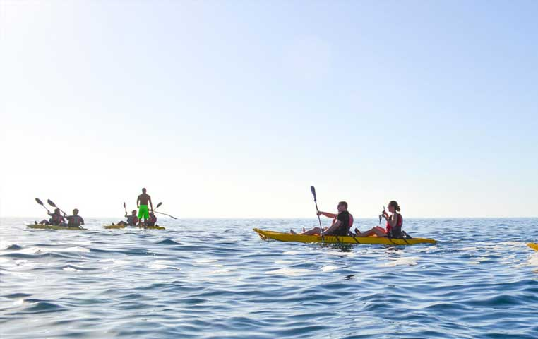 Man on a Surf up Paddle accompanied by Kayaks in Los Cabos