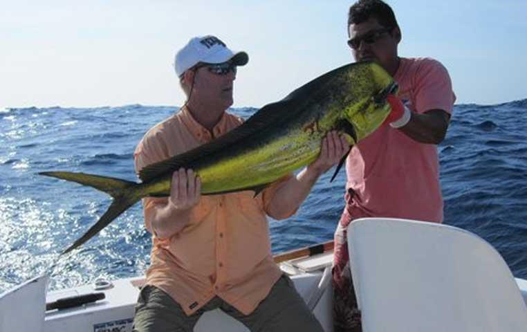 Cabo San Lucas Sportfishing Charter