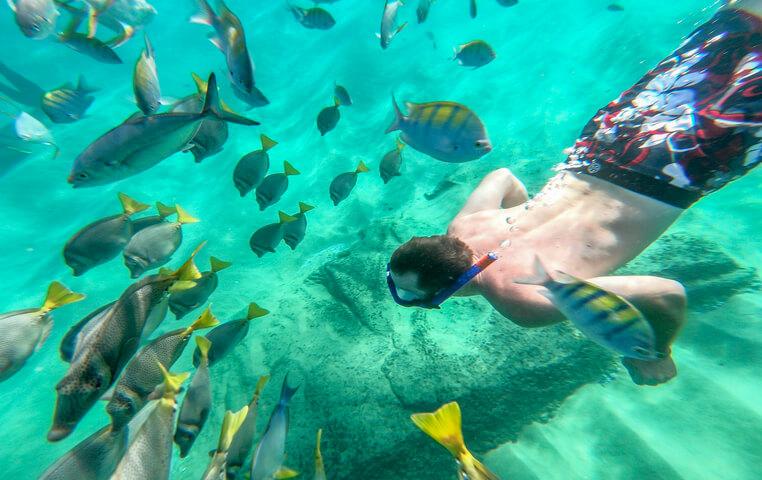 Best Beach in Cabo San Lucas