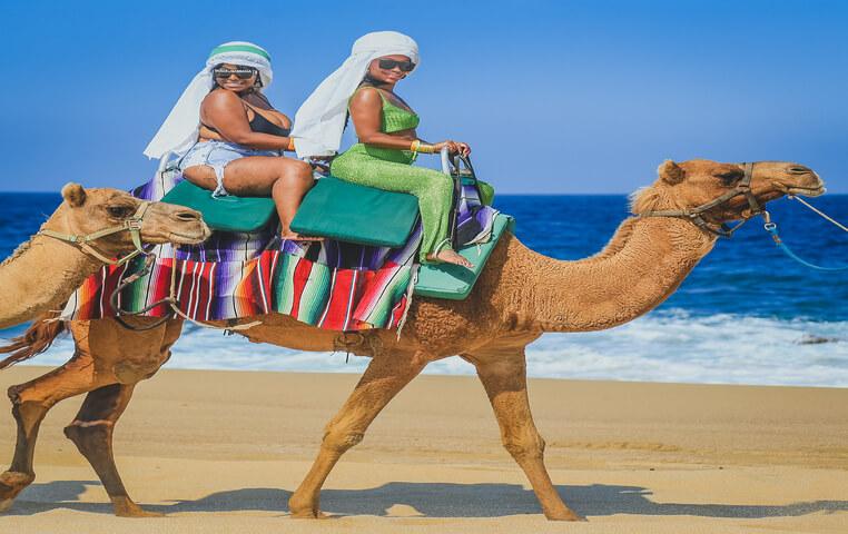 Cabo Camel Safari