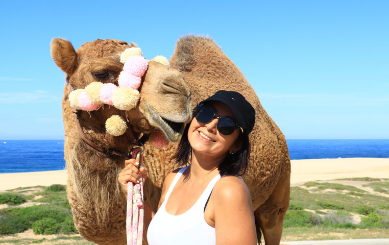 On a Camel Tour and Safari in Cabo San Lucas