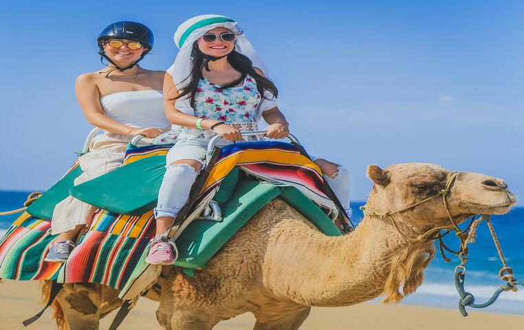 Camel Safari in Cabo San Lucas