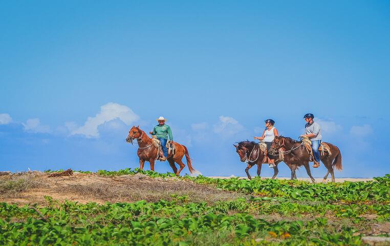 Horseback Riding in San Jose del Cabo