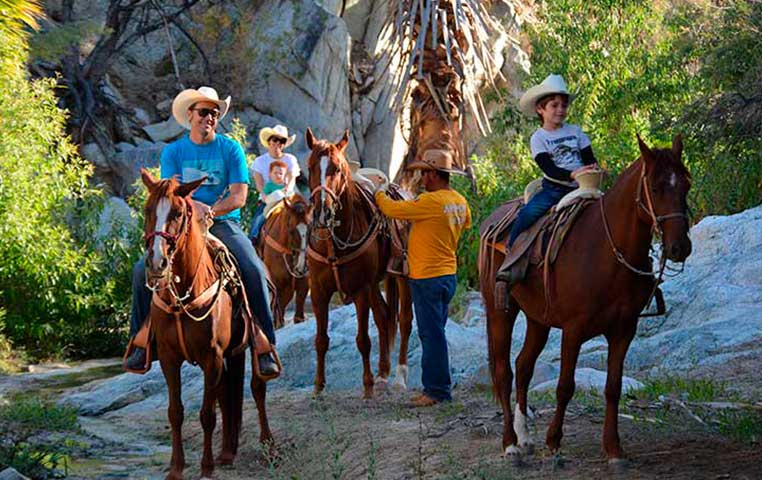 A group of Horse back Riders going through a Wild Canyon Setting in Cabo