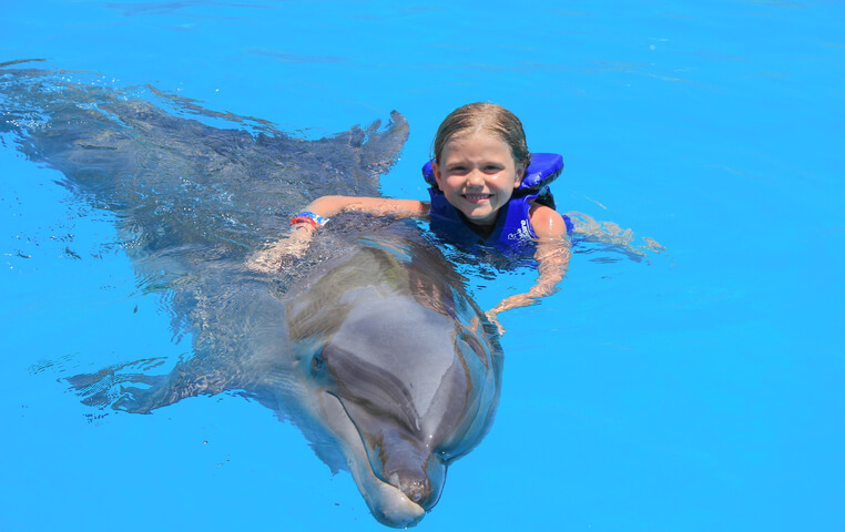 Dolphin Swim for Kids in Cabo San Lucas