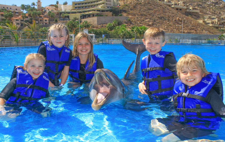 Cabo Kids Dolphin
