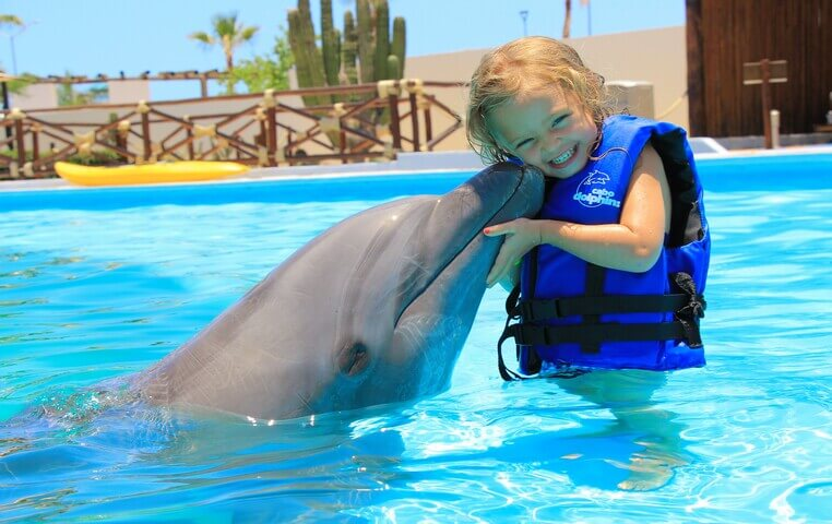 Dolphin Kids Cabo