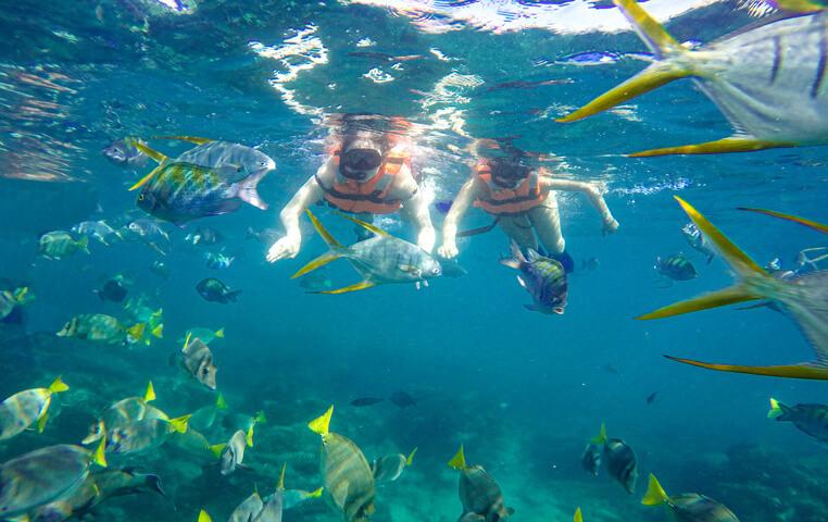 Snorkeling in San Jose del Cabo