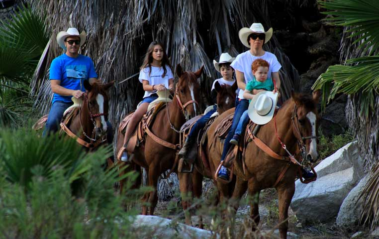 Family riding Horses in the Los Cabos Desert and Mountain Path