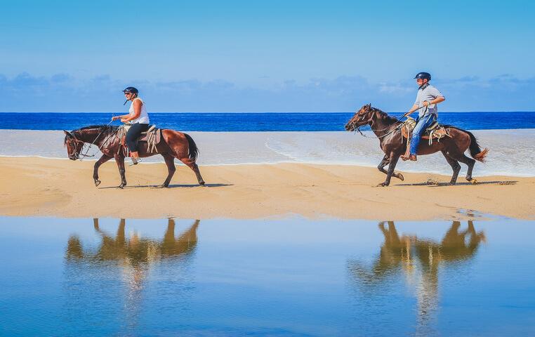 Horseback Riding and Dune Buggy Combo