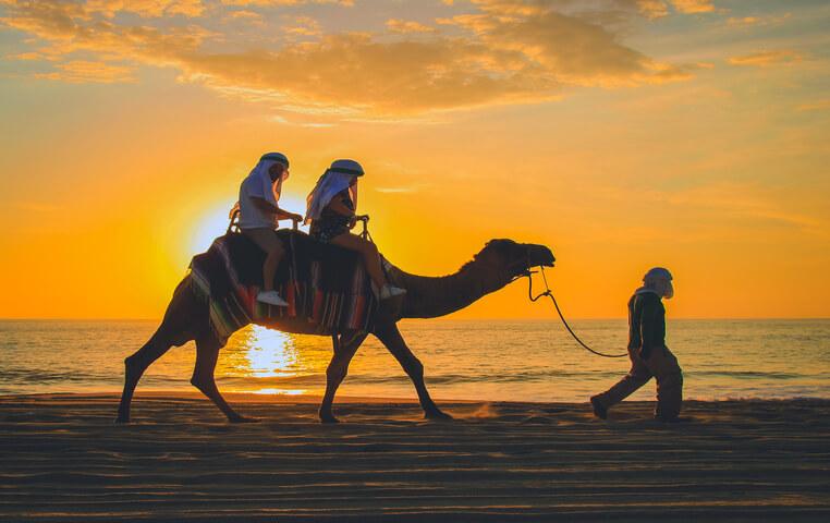 Sunset Camel Riding