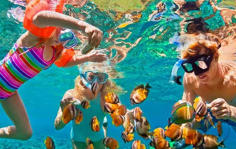 Family in pristine water at the Cabo Arch snorkeling surounded by Colorful Fish